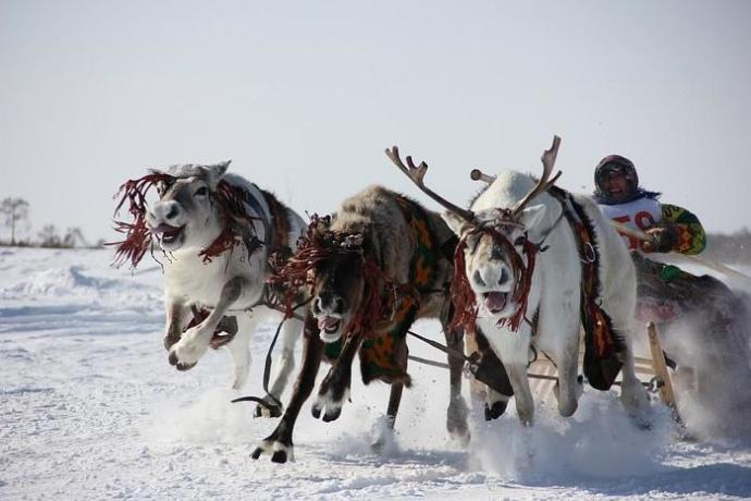 Ханты и манси— 9 шокирующих фактов об этих народах