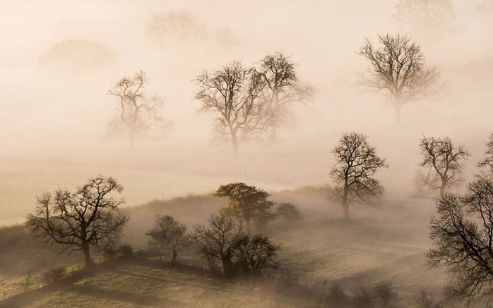 Фотографии туманов и интересные факты о скоплении воды в воздухе