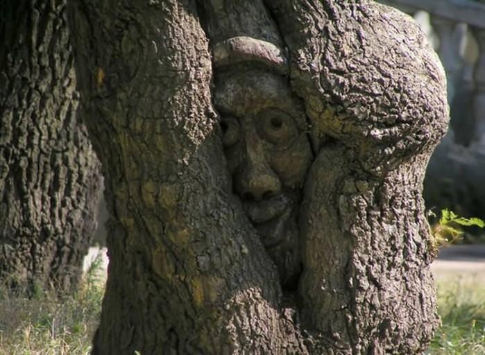 Откуда повелось стучать по дереву
