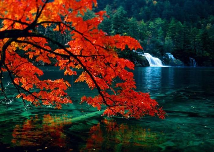 Долина Цзючжайгоу— природный парк невероятной красоты в Китае