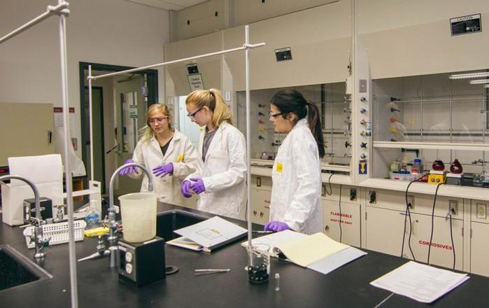 Новый способ продлить жизнь нашли ученые Йельского университета