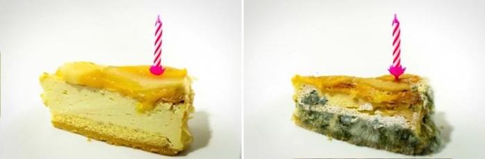 Как выглядят продукты через некоторое время