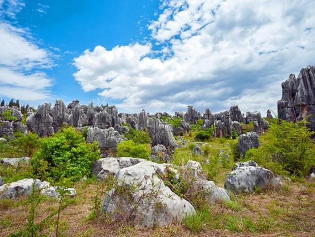 Знаменитый каменный лес в провинции Юньнань (Китае)