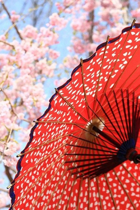 Китайские бумажные зонты— символ Поднебесной с древних времен