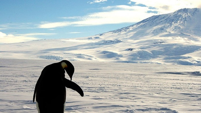 В Антарктиды подо льдами обнаружено более 100 вулканов, которые пока дремлют