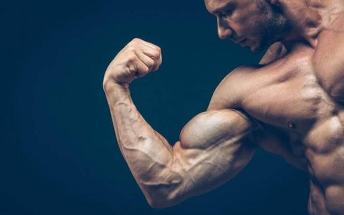 Как тестостерон влияет на человека