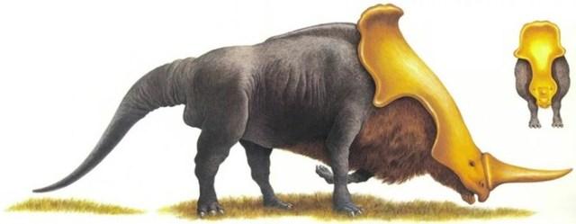 Секреты эволюции животного мира