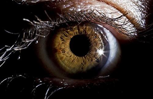 Что происходит с нашим миром ночью: 11 фактов из «Большой книги темноты»