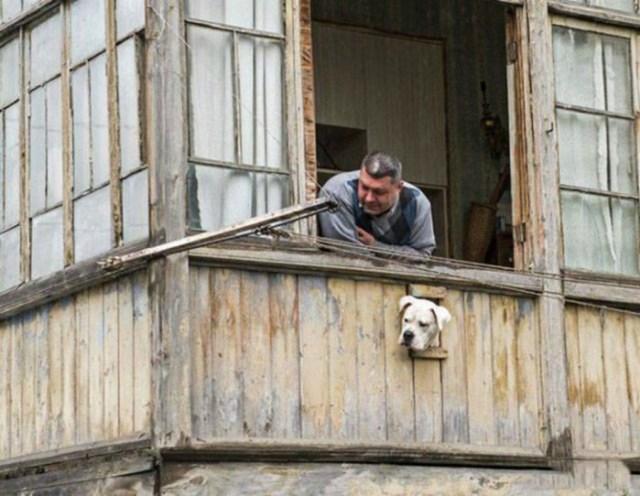 Смешные фотографии отечественного производства: приколы нашего городка!