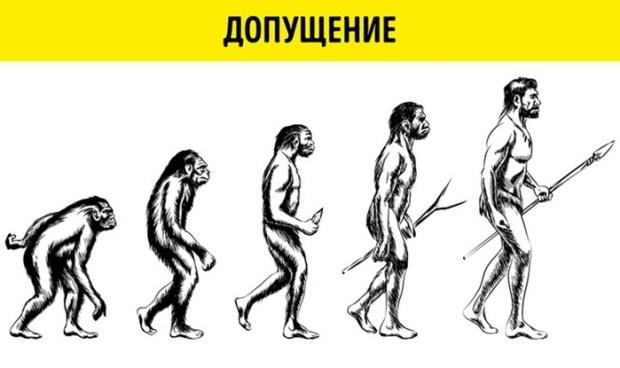 10ошибочных научных иллюстраций, к которым все привыкли