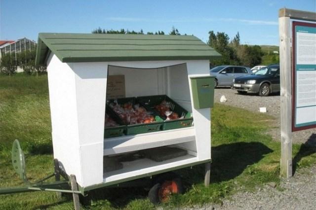 Как работают киоски самообслуживания в Исландии
