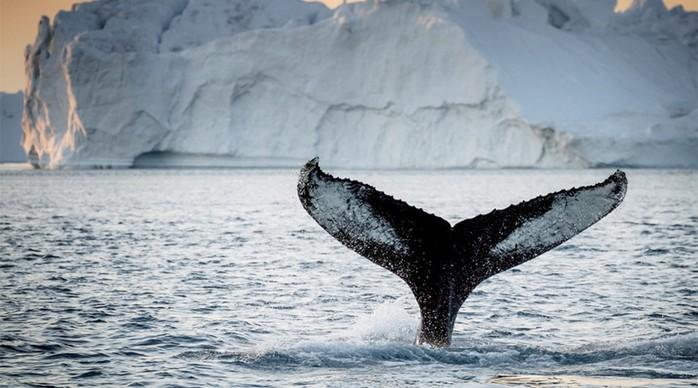 15 самых интересных мест нашей планеты, которые не освоены до сих пор