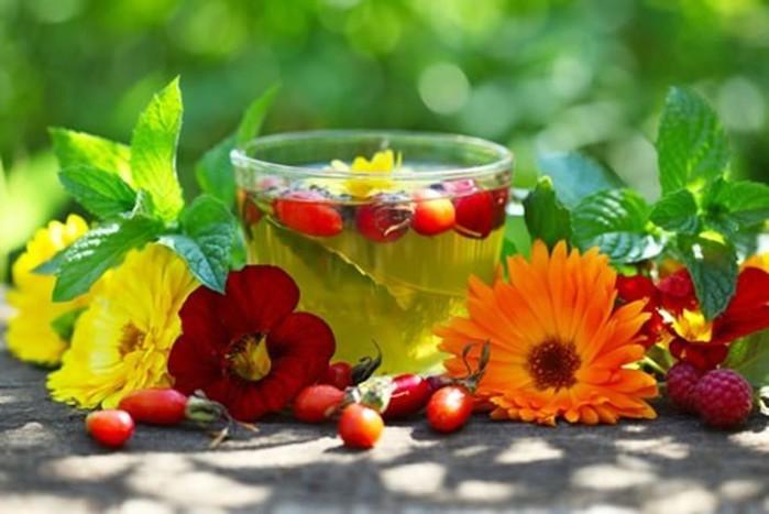 Средства и травы, повышающие иммунитет