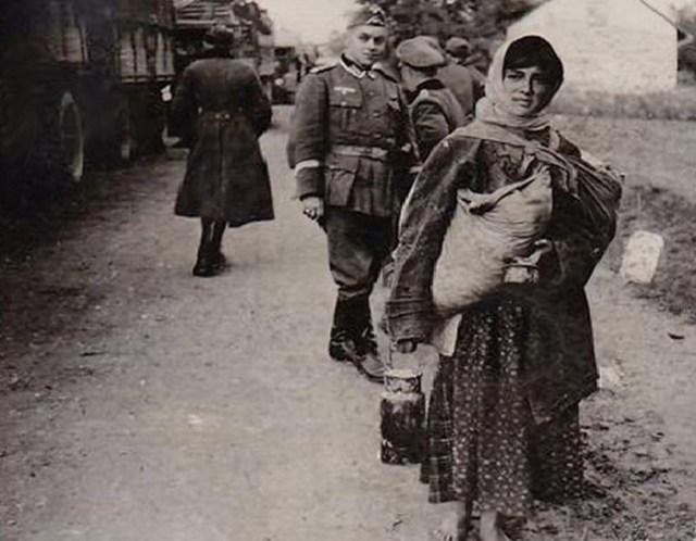За что Гитлер хотел уничтожить всех цыган?
