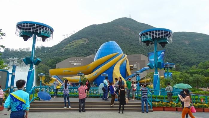 Аттракционы и животные Ocean Park в Гонконге: места для семейного отдыха