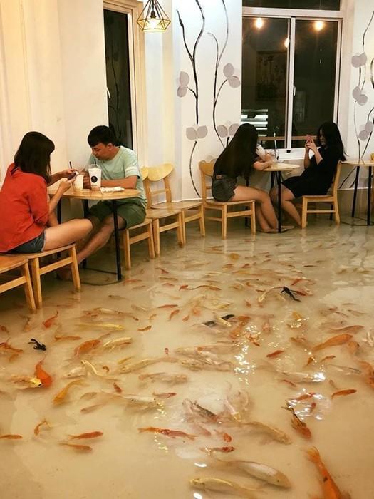 Вьетнамское кафе, где на полу плавают живые рыбы