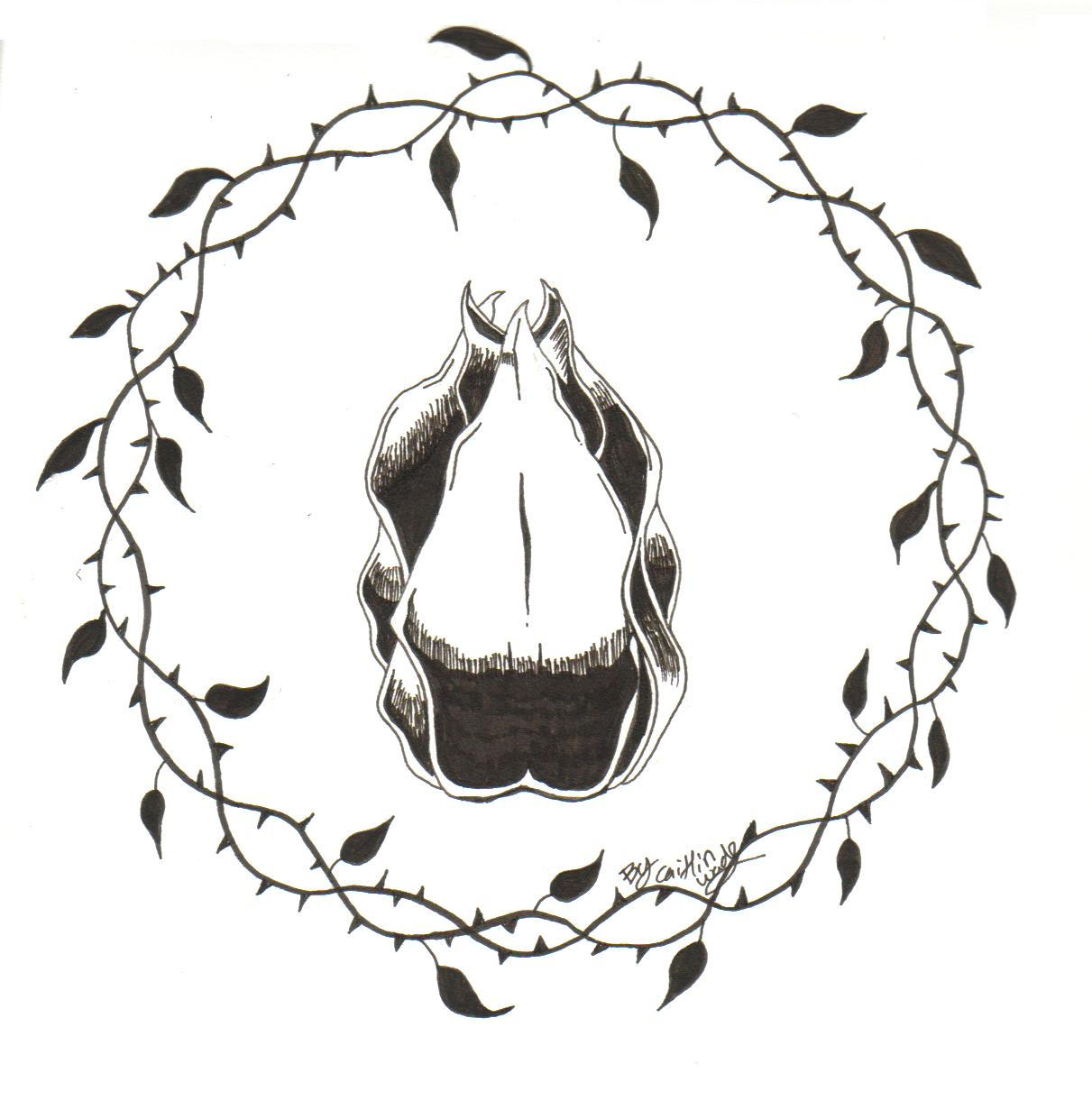 Sedorns By Ktrox On Deviantart