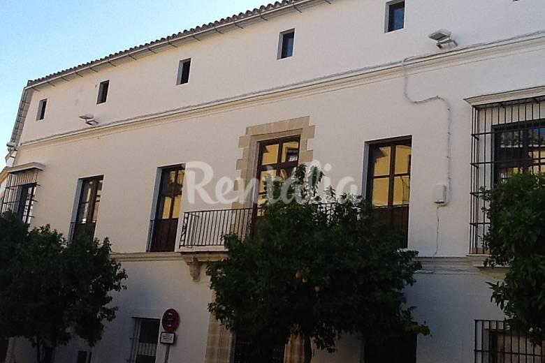 8 Apartamentos en alquiler en Jerez de la Frontera  Jerez