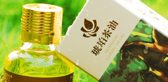 山茶油的功效 茶油的27種常見功效與作用 - 當當文章網