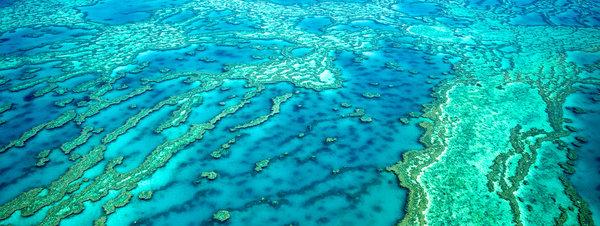 EE.UU. dejó caer 4 bombas en la Gran Barrera de coral de Australia