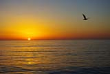 Sunset by Carolyn White copyright 2011