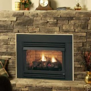 Free Propane Or Natural Gas Fireplaces Ventless Gas
