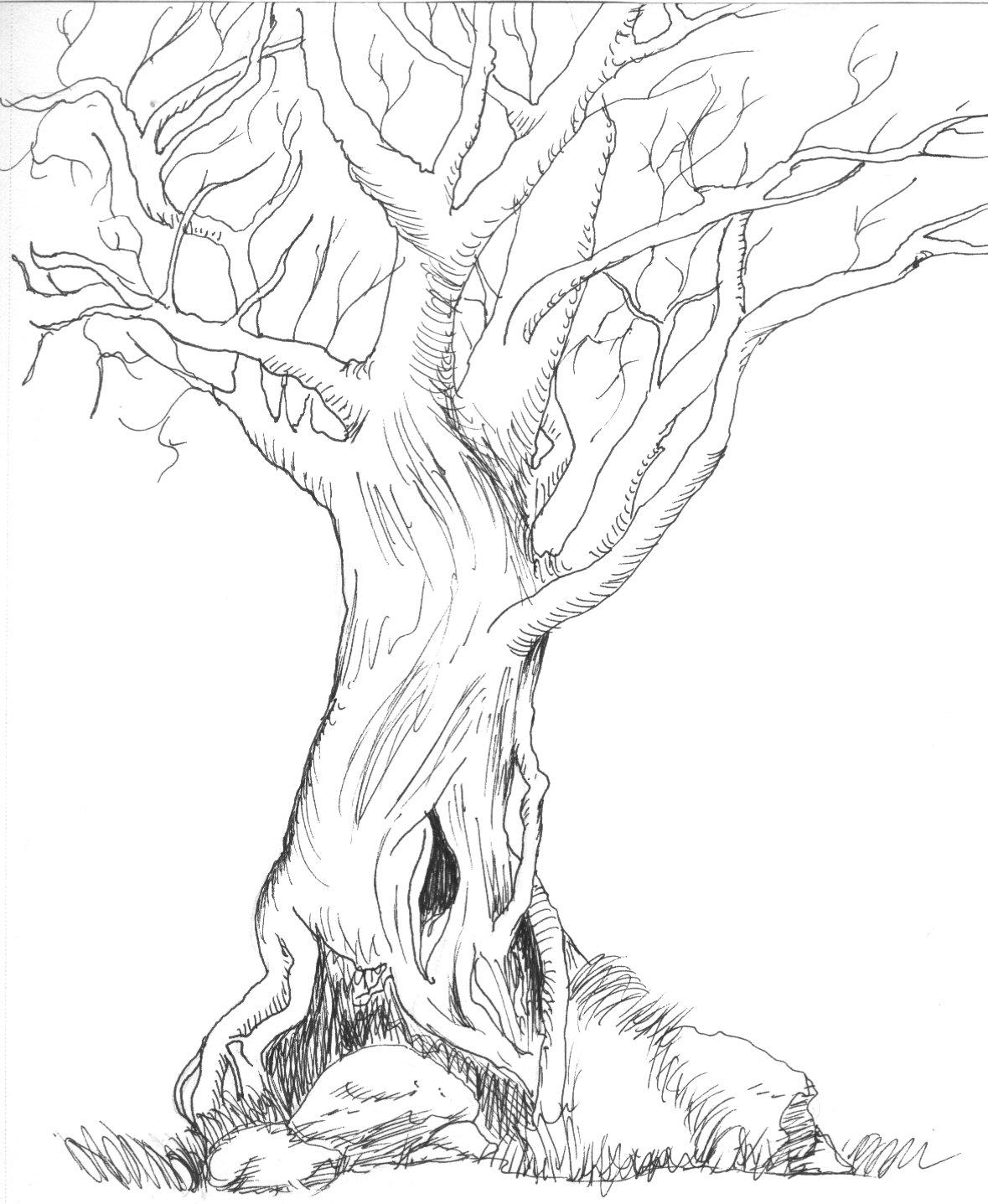 the old evil tree by myvoicesrloudest on DeviantArt