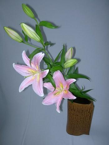 百合の花を活けました♪:ようこそ琉球太田焼窯元へ