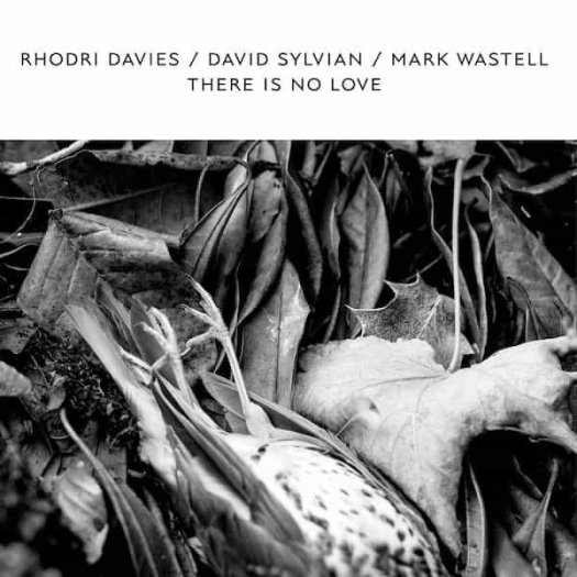 RHODRI DAVIES / DAVID SYLVIAN / MARK WASTELL / There Is No Love (LP)