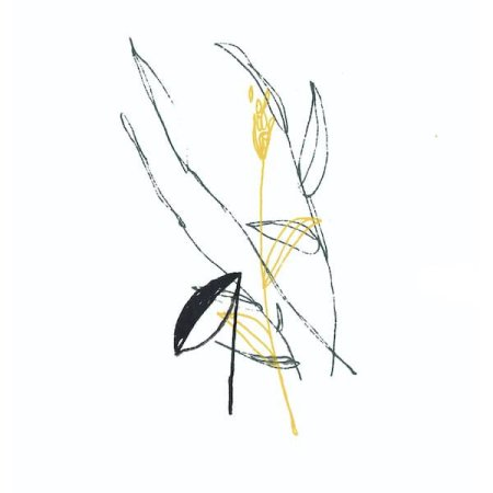 BENOIT PIOULARD / Slow Spark, Soft Spoke (LP)