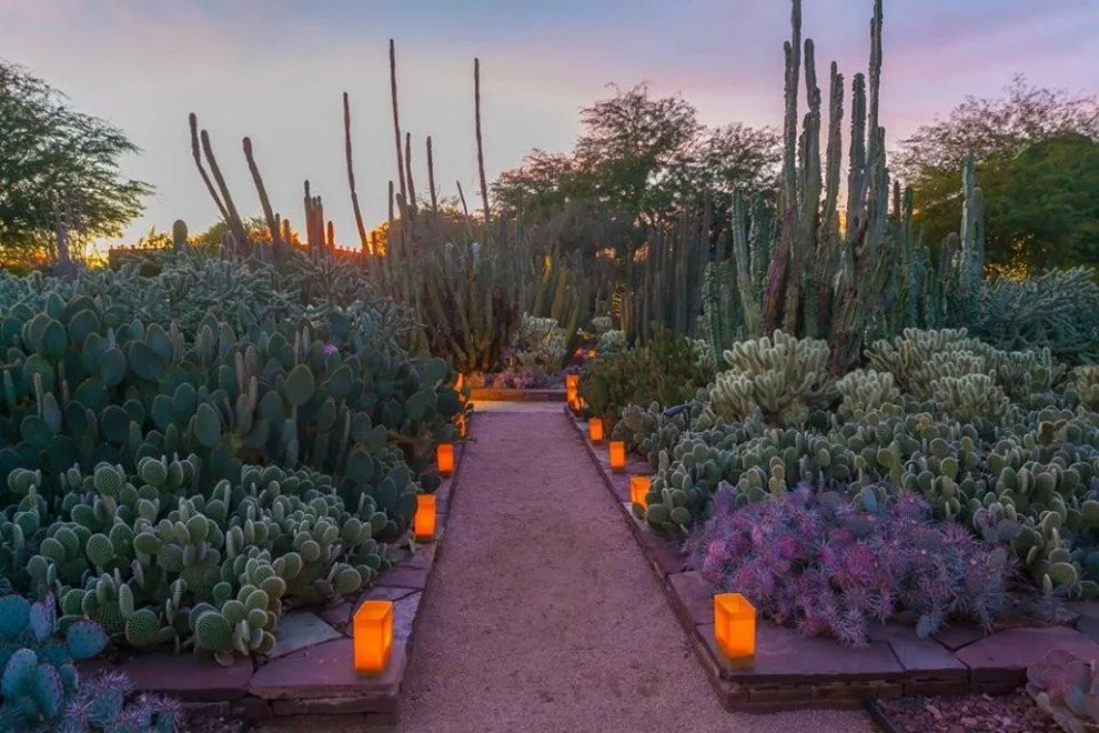 Scottsdale Romantic Things To Do 10Best Attractions Reviews
