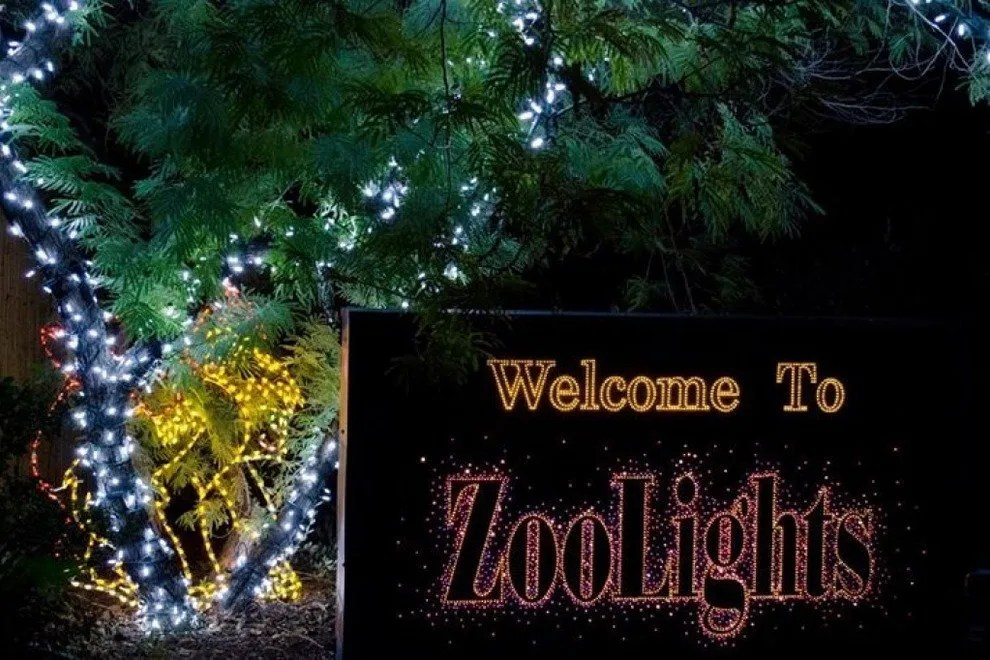 Zoo Lights Arizona