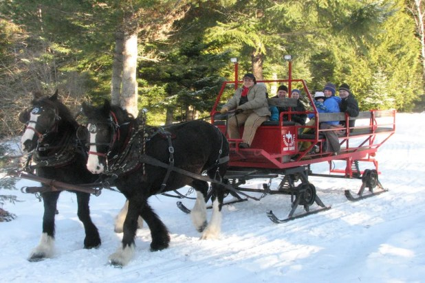 Take a scenic sleigh ride at Western Pleasure Ranch