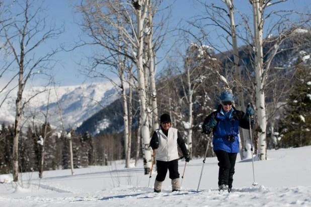 Explore the snowy wilderness of Vista Verde