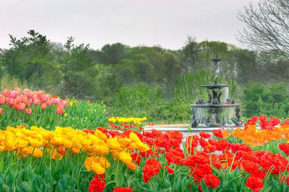 Image Result For New York Botanical Garden