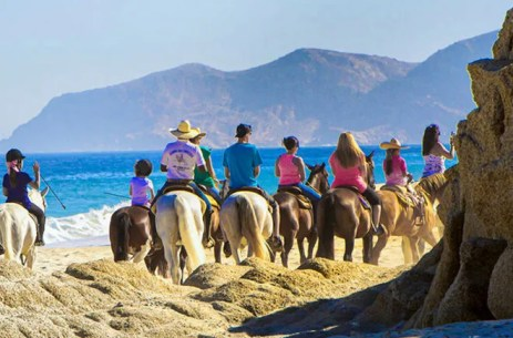 Cabo San Lucas Guided Tours and Cruises: 10Best Reviews