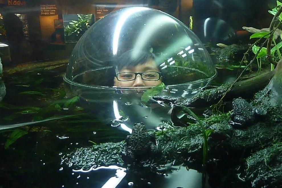Aquarium Plants Canada