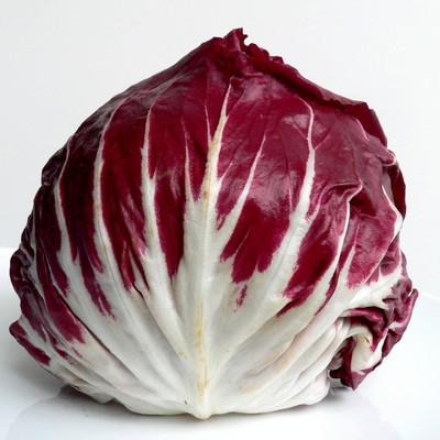Radicchio rosso gustosa verdura invernale
