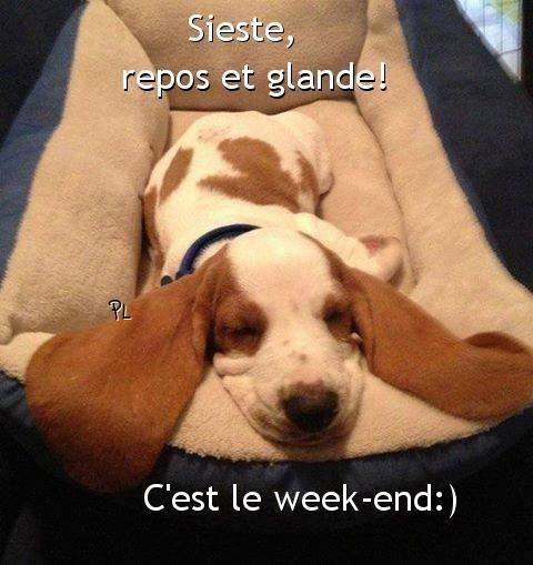 Bon weekend images photos et illustrations pour facebook