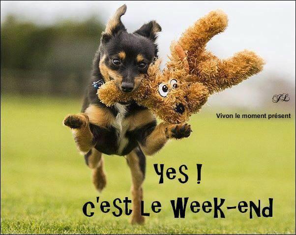 22 Images et photos avec tag Bon Week End Humour