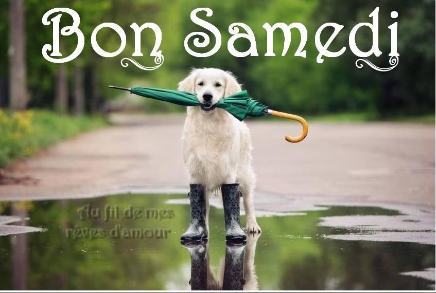 Samedi Images Photos Et Illustrations Pour Facebook