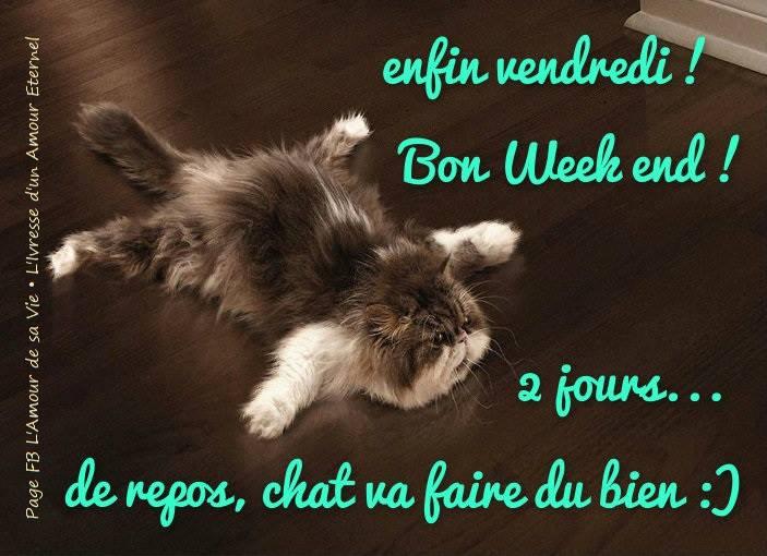 Enfin vendredi Bon week end 2 jours de repos chat va