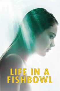 Życie na kredycie (2014) Napisy PL