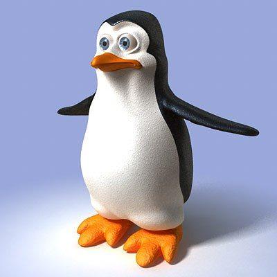 3D Cartoon Penguin CGTrader