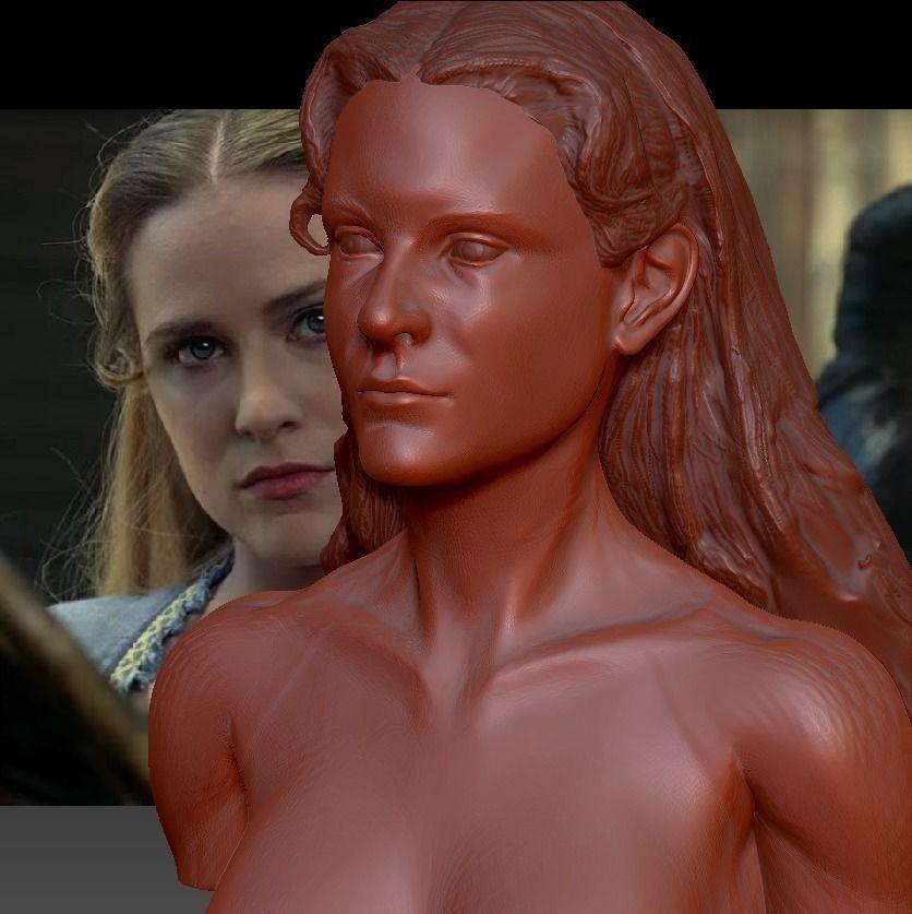 Westworld Dolores Abernathy Evan Rachel Wood 3d Model 3D