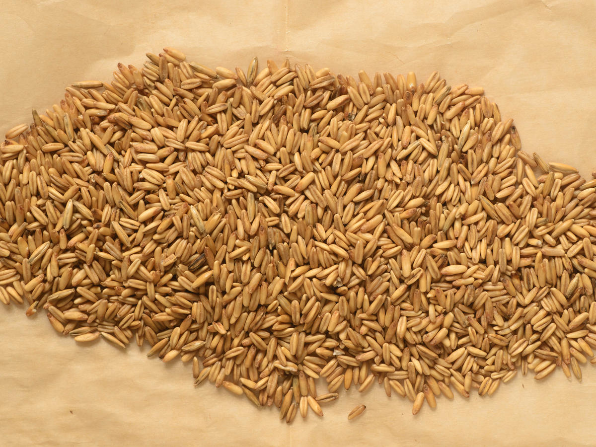 hight resolution of whole oat groats