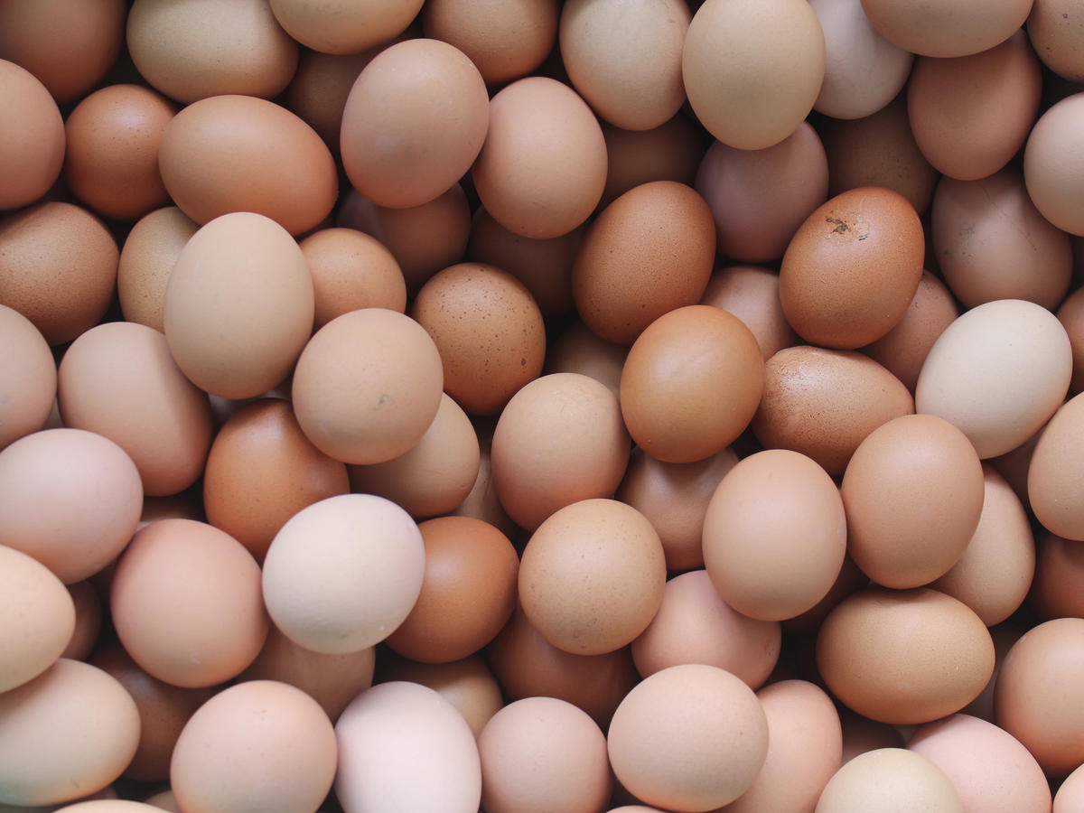 Eggs Recalled for Salmonella at Piggly Wiggly Western