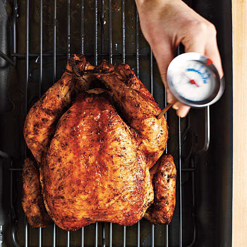 Temperature Check  How To Roast a Whole Chicken  Cooking