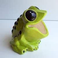 Tree Frog Sponge holder Scrubby Holder Brillo pad holder