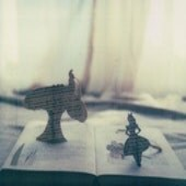wonderland polaroid 8x8 print - mkendall